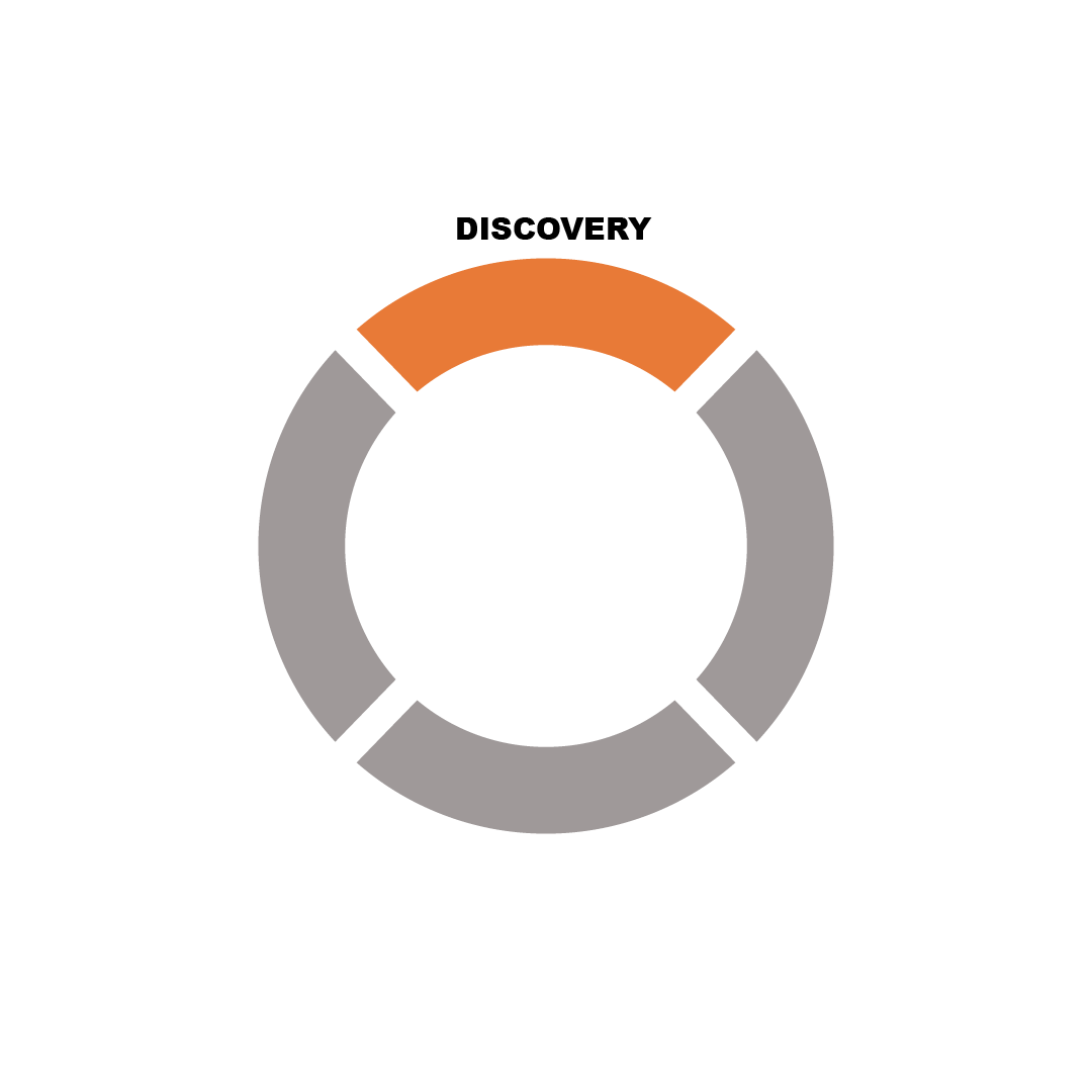 Orange and grey circle with text saying discovery